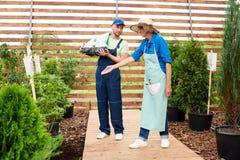 Dos trabajadores en jardín fotos de archivo libres de regalías