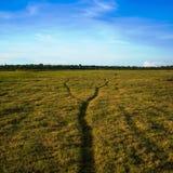 Dos trayectorias unen en una en campo verde Imágenes de archivo libres de regalías