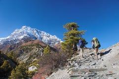 Dos trekkers que se ejecutan en el camino contra Annapurna Fotografía de archivo libre de regalías