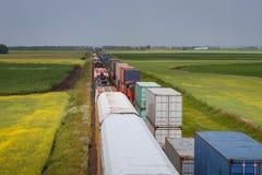 Dos trenes que pasan a través de campos vibrantes en pradera foto de archivo