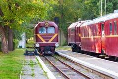 Trenes del rojo Fotografía de archivo