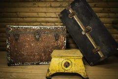 Dos troncos y pasos Fotografía de archivo libre de regalías