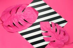 Dos tropicales y hojas de palma rosadas de monstera en color rosado vibrante en fondo rayado y rosado dual Arte del concepto imagen de archivo