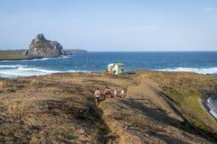 DOS Tubarões e vista secondaria delle isole - Fernando de Noronha, Pernambuco, Brasile di Enseada della baia degli squali fotografia stock