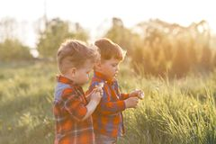 Dos tweenes lindos de los muchachos del hermano que se divierten afuera en la puesta del sol en el país fotografía de archivo