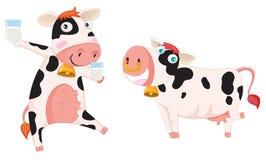 Dos vacas Imagen de archivo