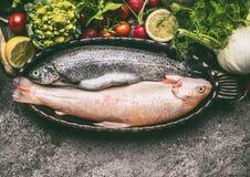 Dos variedades de trucha en la hornada ruedan con las verduras frescas para cocinar sano y sabroso en la tabla gris del granito Imagenes de archivo