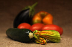 Dos vegetais vida ainda Fotos de Stock Royalty Free