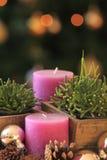 Dos velas púrpuras Fotos de archivo libres de regalías