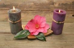 Dos velas y una flor Fotos de archivo libres de regalías