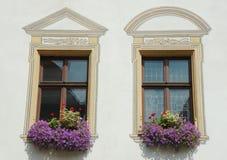 Dos ventanas con las flores violetas Imagen de archivo libre de regalías