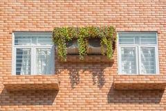 Dos ventanas en pared Fotos de archivo