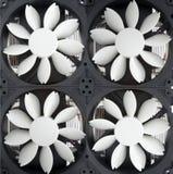 Dos ventiladores Foto de archivo libre de regalías