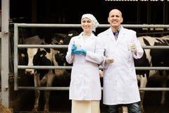 Dos veterinarios en granja de las vacas Fotos de archivo libres de regalías