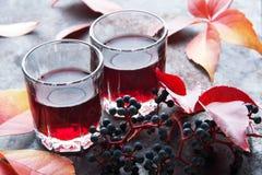 Dos vidrios de la bebida roja Imágenes de archivo libres de regalías