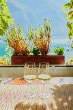 Dos vidrios de vino blanco cerca de la ventana fotos de archivo