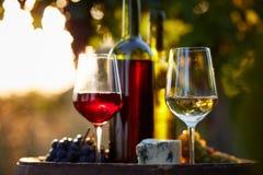 Dos vidrios de vino blanco y rojo en la puesta del sol Fotos de archivo