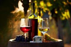 Dos vidrios de vino blanco y rojo en la puesta del sol Foto de archivo