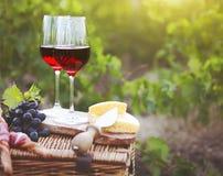 Dos vidrios de vino rojo con el pan, carne, queso en el viñedo Fotografía de archivo libre de regalías