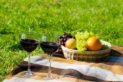 Dos vidrios de vino rojo en un colchón de la tela escocesa, en un césped y una fruta verdes Imagen de archivo libre de regalías