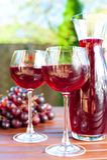 Dos vidrios de vino rojo hecho en casa delicioso con la uva Imagen de archivo libre de regalías