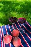 Dos vidrios de vino tinto, en un fondo de la hierba El concepto de una comida campestre romántica en naturaleza imagen de archivo