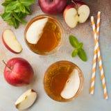 Dos vidrios de zumo de manzana rojo con la menta y el hielo en una tabla oxidada vieja Refresco en un fondo azul Visión superior Fotos de archivo libres de regalías