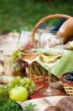 Dos vidrios del vino blanco Foto de archivo libre de regalías