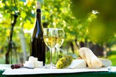 Dos vidrios del vino blanco y de la botella Fotografía de archivo