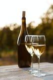 Dos vidrios del vino blanco y de la botella Imagen de archivo libre de regalías