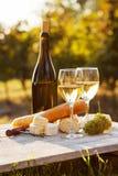 Dos vidrios del vino blanco y de la botella Imágenes de archivo libres de regalías
