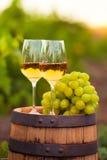 Dos vidrios del vino blanco y las uvas en el fondo de la uva reman Fotos de archivo libres de regalías