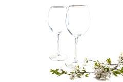 Dos vidrios vacíos con la ramita floreciente de la cereza Imagen de archivo libre de regalías