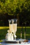 Dos vidrios y plumas que se casan en el fondo de la hierba verde Fotos de archivo libres de regalías
