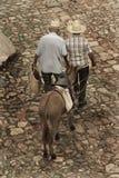 Dos viejos hombres y una mula Imágenes de archivo libres de regalías