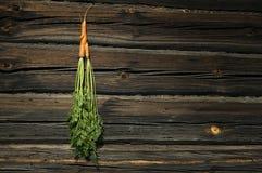 Dos zanahorias fotografía de archivo