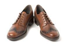 Dos zapatos marrones aislados en blanco Imagen de archivo libre de regalías