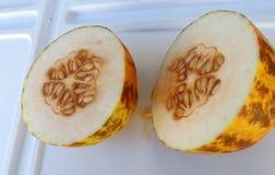 Dosakaya, Cucumis melo subsp. agrestis var conomon Royalty Free Stock Images
