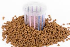 Dose mesurée de nourriture pour le chien photos libres de droits