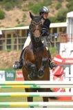doskakiwania equestrian show Fotografia Stock