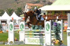 doskakiwania equestrian show Fotografia Royalty Free
