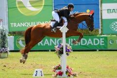 doskakiwania equestrian show Obraz Stock