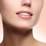 Doskonalić uśmiech z białymi zdrowymi zębami i naturalnymi pełnymi wargami, stomatologicznej opieki pojęcie piękny kawałek twarzy Obrazy Royalty Free