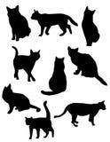 doskonalić zwierzęcia domowego ilustracja wektor