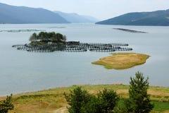 Dospat lake, Bulgaria Stock Image