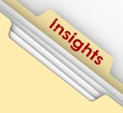 Dossier Fol de Manille d'analyse de l'information de communication d'idées d'analyse illustration libre de droits