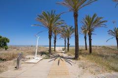 Dostęp sosny plaża w Grao zdjęcia royalty free
