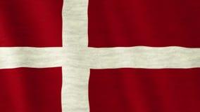 dostępne Denmark flagi okulary stylu wektora zdjęcie wideo