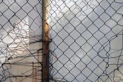 dostępnego tła ogrodzenia bezszwowy wektorowy biel drut Zdjęcie Royalty Free