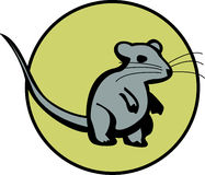 dostępne myszy plików myszy szczura wektora Obrazy Royalty Free